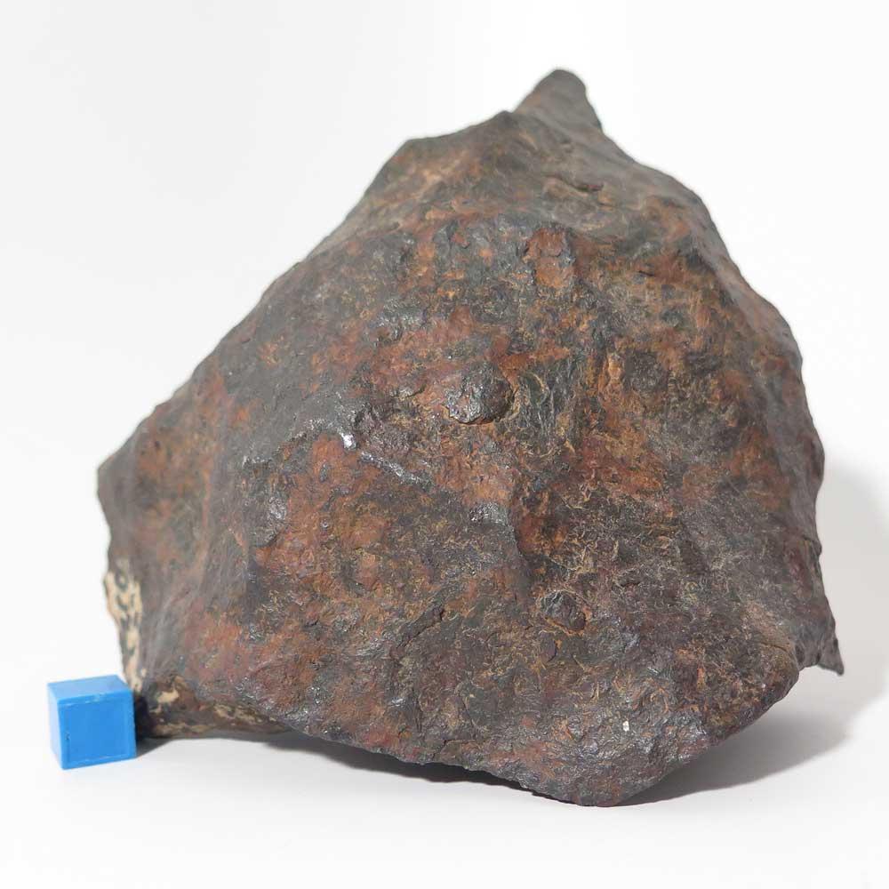 Oriented canyon diablo meteorite i hope so meteorite times magazine - Meteore et meteorite ...