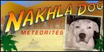 Nakhla Dog Meteorites